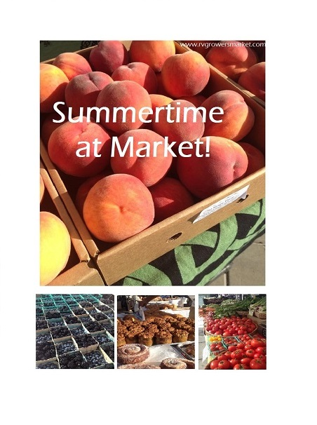 market-pics_ahogge-summertime-2014