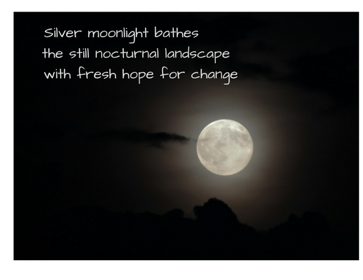 Silver moonlight baths