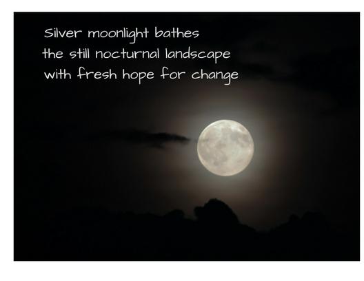 Silver moonlight baths