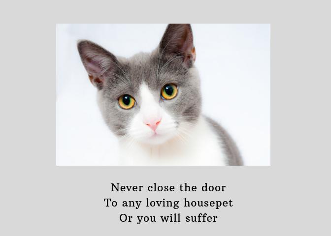 Haifloof door